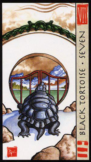 Black Tortoise Seven